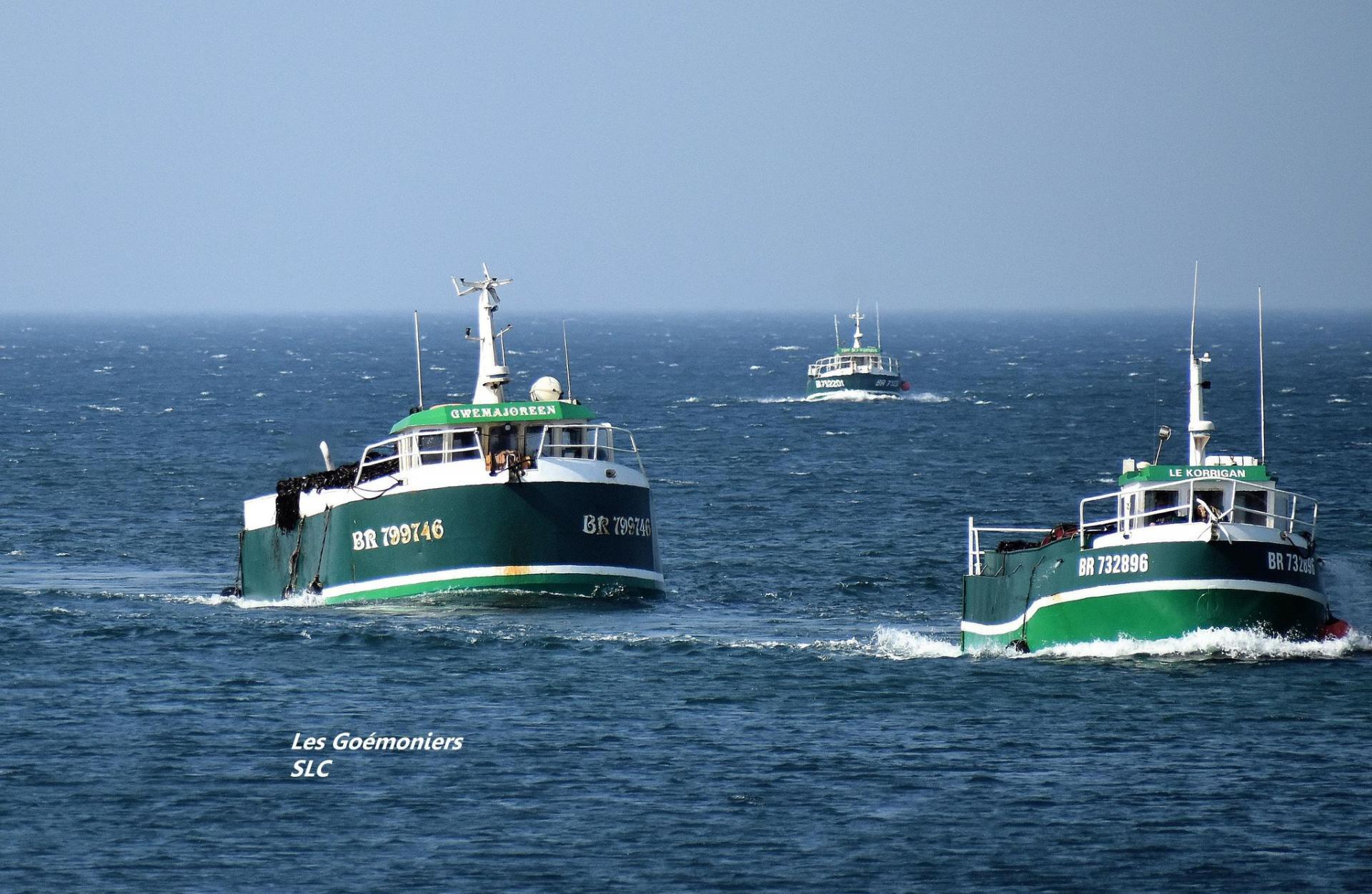 200917 flottille galliou a lanildut c sebastien le corre