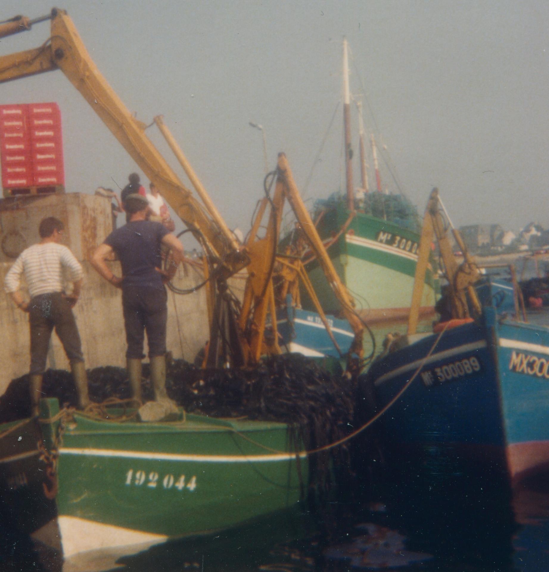 Francoise oiseau des iles la bretagne roscoff 1980 erwan guegueniat 2